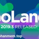 JetBrains GoLand 2019